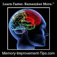 Welcome to Memory Improvement Tips!