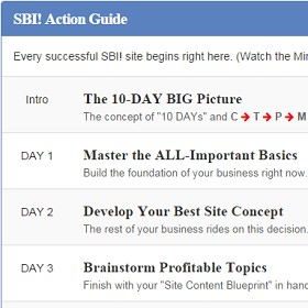 sbi action guide